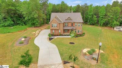 Fountain Inn Single Family Home For Sale: 256 Ivy Woods