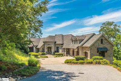 Travelers Rest Single Family Home For Sale: 1209 Mountain Summit
