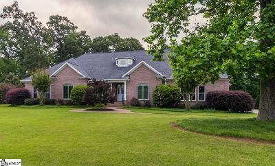 Simpsonville Single Family Home For Sale: 9 Hawks Perch