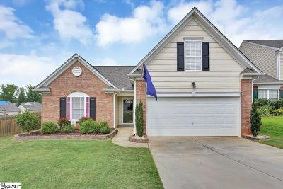 Greenville County Single Family Home For Sale: 107 Circle Grove