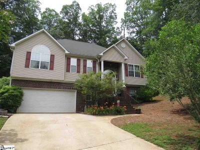 Greenville County Single Family Home For Sale: 42 Daughtry