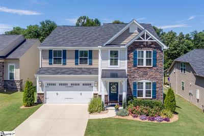 Greenville County Single Family Home For Sale: 127 Chapel Hill