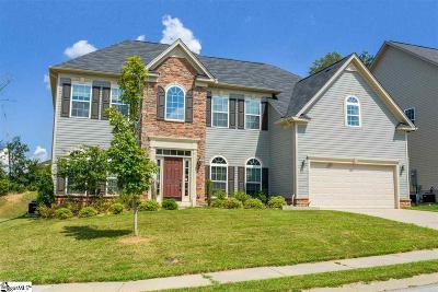 Greenville County Single Family Home For Sale: 220 Kelsey Glen