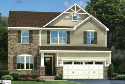 Greenville County Single Family Home For Sale: 224 Waters Run