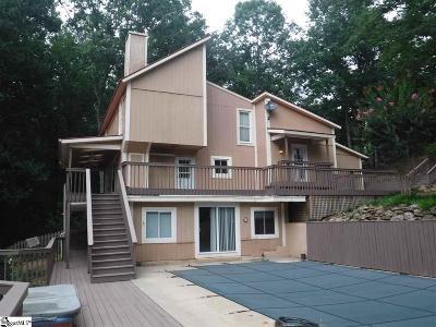 Greenville Single Family Home For Sale: 417 Audubon