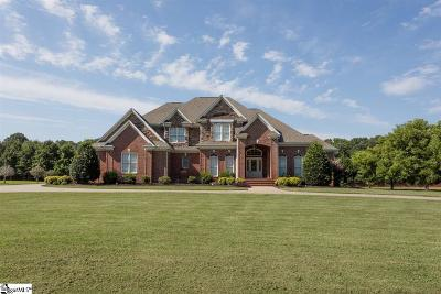 Simpsonville Single Family Home For Sale: 2335 Roper Mountain