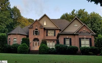 Greenville County Single Family Home For Sale: 53 Pleasant Valley