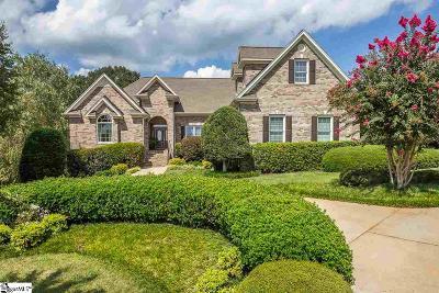 Easley Single Family Home For Sale: 104 Farm Terrace
