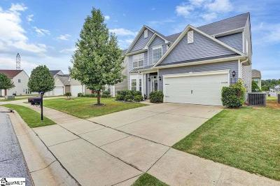 Greenville County Single Family Home For Sale: 19 Cork