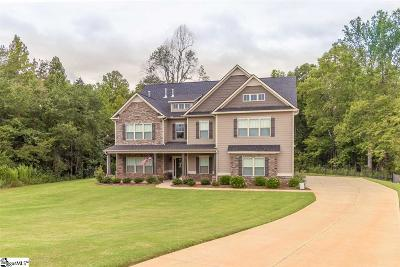 Travelers Rest Single Family Home For Sale: 124 Grassy Meadow