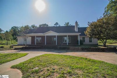 Fountain Inn Single Family Home For Sale: 244 Hewitt
