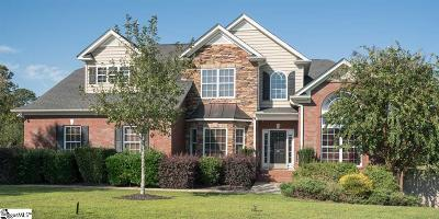 Simpsonville Single Family Home For Sale: 18 Stonoview