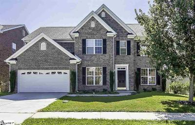 Greenville County Single Family Home For Sale: 16 Galway