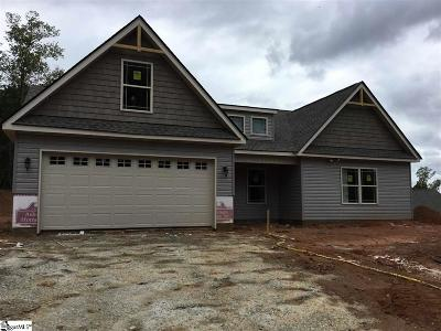 Spartanburg Single Family Home For Sale: 786 Old Canaan