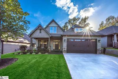 Greenville Single Family Home For Sale: 22 Tormek