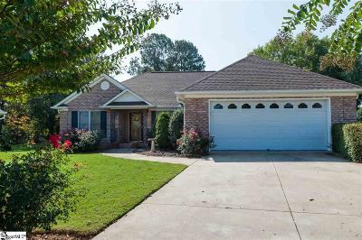 Spartanburg Single Family Home For Sale: 217 Rivermill