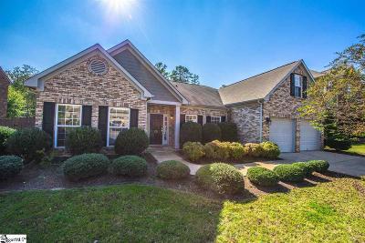 Simpsonville Single Family Home For Sale: 232 Strasburg