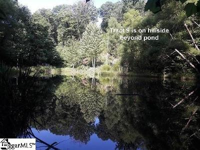 Travelers Rest Residential Lots & Land For Sale: 165 Glassy Falls