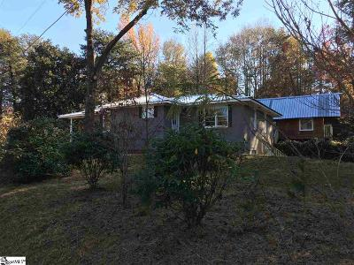 Travelers Rest Single Family Home For Sale: 1040 Little Texas