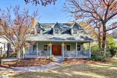 Greenville Single Family Home For Sale: 1117 Roper Mountain