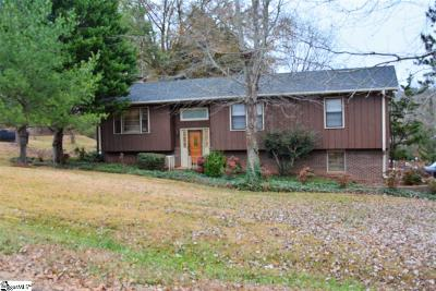 Easley Single Family Home For Sale: 118 Odessa