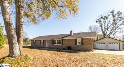 Belton Single Family Home For Sale: 4500 Old Williamston