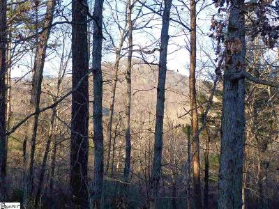 Greenville County Residential Lots & Land For Sale: 25 Lake Hills