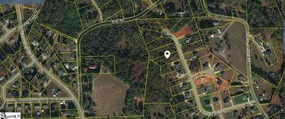 Greer Residential Lots & Land For Sale: 209 Saddle Creek