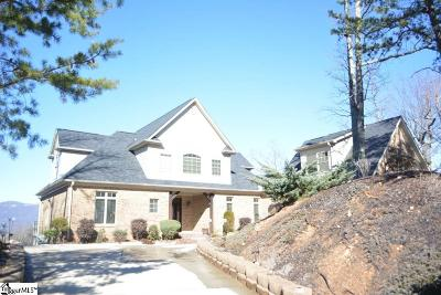 Taylors Single Family Home For Sale: 602 Packs Mountain Ridge