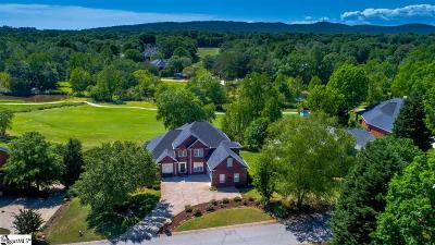 Greenville County Single Family Home For Sale: 323 Raes Creek