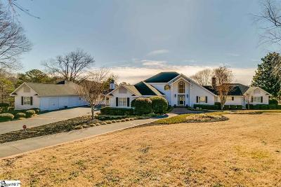 Easley Single Family Home For Sale: 131 Willow Lake