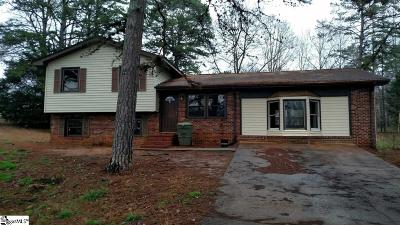 Fountain Inn Single Family Home For Sale: 222 Brooklawn