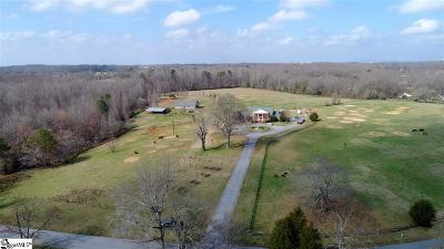Piedmont Single Family Home For Sale: 323 Ray