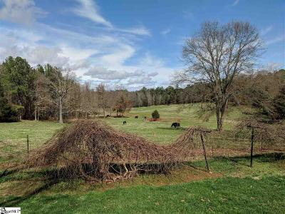 Easley Residential Lots & Land For Sale: 3113 Pelzer