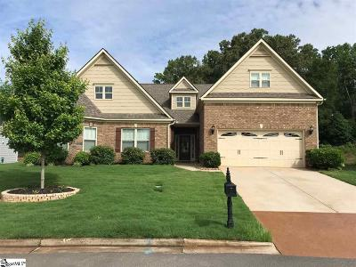 Anderson Single Family Home For Sale: 138 Jones Creek