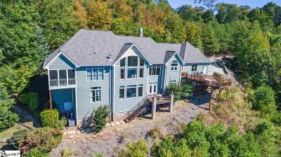 Greenville Single Family Home For Sale: 1253 Altamont