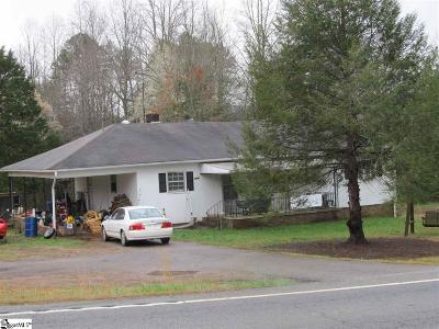 Easley Single Family Home For Sale: 1336 Farrs Bridge