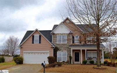 Greenville County Single Family Home For Sale: 19 Cartecay