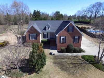 Anderson Single Family Home For Sale: 115 Saddle Brook