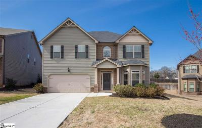 Greenville Single Family Home For Sale: 19 River Valley