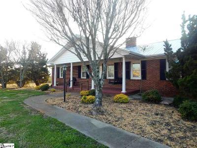 Easley Single Family Home For Sale: 3308 Pelzer