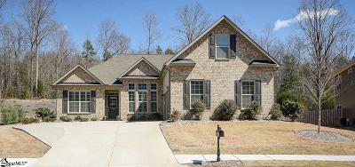 Fountain Inn Single Family Home For Sale: 17 Oak Willow