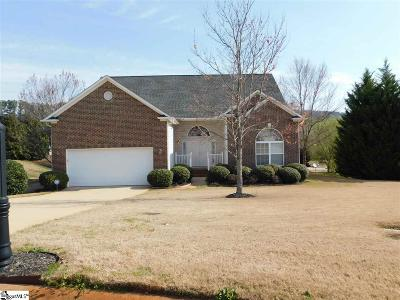 Greenville County Single Family Home For Sale: 6 Plassy