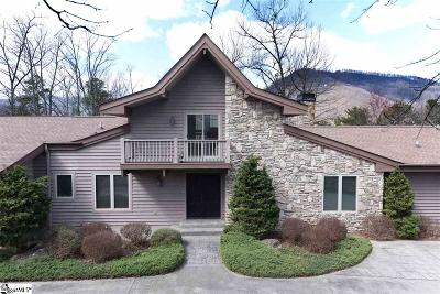 Travelers Rest Single Family Home For Sale: 11 Deer Valley