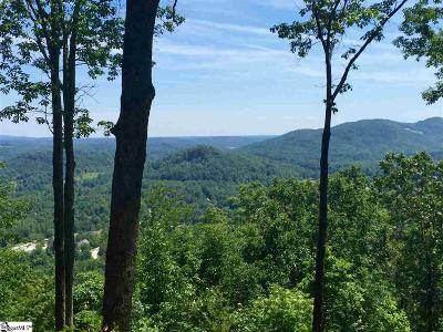 Travelers Rest Residential Lots & Land For Sale: 357 Mountain Summit