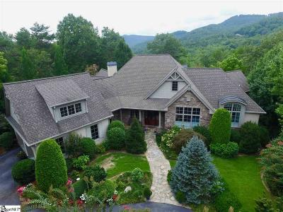 Travelers Rest Single Family Home For Sale: 12 Shoal Creek