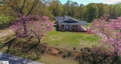 Pelzer Single Family Home For Sale: 2161 Reedy Fork