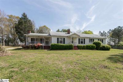 Fountain Inn Single Family Home For Sale: 395 S Nelson