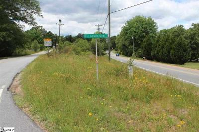 Easley Residential Lots & Land For Sale: Old Saluda Dam