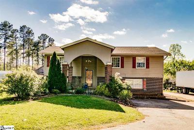 Fountain Inn Single Family Home For Sale: 214 Nash Mill Rd